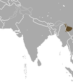 Burmese Short-tailed Shrew area.png