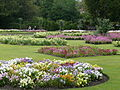 Bury St. Edmunds Abbey gardens.JPG