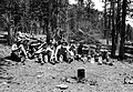 CCC (Civilian Conservation Corps) workers at lunch, Cow Creek, Rocky Mountain National Park. (a7af327c5e064da6955af178424118ed).jpg