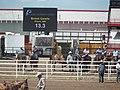 CFD Tie-down roping Brent Lewis -2.jpg