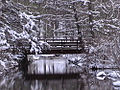 CGSP Snowy Bridge.jpg