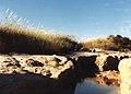 CSIRO ScienceImage 134 Salinity Affected Pool of Water.jpg