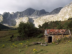 Cabana Brañas de Agüeria.JPG