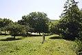 Cabrerets - panoramio (15).jpg