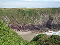 Caerfai Beach - geograph.org.uk - 1406865.jpg