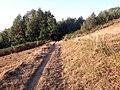 Camino Primitivo, entre Padraira y Gestoselo.jpg