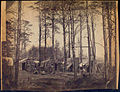 Camp at Brandy Station. (3110010017).jpg