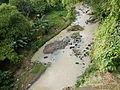 Candelaria,Quezonjf1698 08.JPG