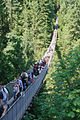 Capilano Suspension Bridge (7960608274).jpg