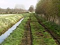 Carr Dike Drain and Footpath - geograph.org.uk - 366261.jpg