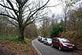 Castle Rd, Tunbridge Wells Common - geograph.org.uk - 1609201.jpg