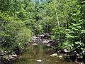 Cedar Falls Trail, Petit Jean State Park 006.jpg