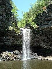 Cedar Falls Trail, Petit Jean State Park 010