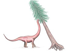 Coloured drawing of a sauropod with a long neck reaching to eat from a tree