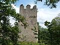 Château de Thol (Neuville sur Ain) - 1.JPG