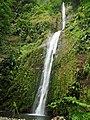 Chûte du parc national de la guadeloupe.jpg