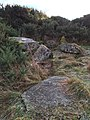 Chambered cairn 350m E of Woodhead - portrait.jpg