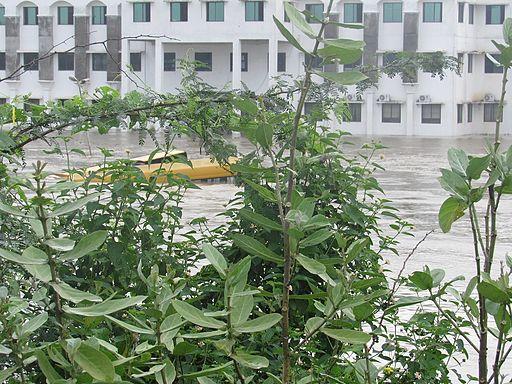 Chennai-floods-2015-dec-5