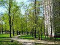Chertanovo Severnoye District, Moscow, Russia - panoramio (9).jpg