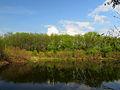 Chervyak lake Muromets1.JPG