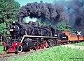Chinese steam in pennsylvania (3857423308).jpg