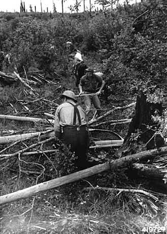 """Civilian Public Service - Members of Conscientious Objectors camp demonstrating """"one-lick method"""" of fire line building for Forest Service Reserves. Larch Mountain."""