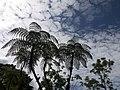 Costa Rica (6109643585).jpg