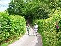 Country lane near Modrydd, Libanus - geograph.org.uk - 190714.jpg