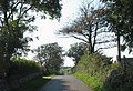 Country road westwards towards the A 5025 - geograph.org.uk - 992698.jpg