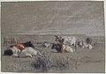 Cows in a Landscape MET 67.55.31.jpg
