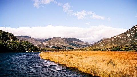 Creek on grassland.jpg