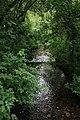 Cresswell crags - panoramio (1).jpg
