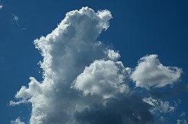 Cumulus clouds in Russia. img 095.jpg