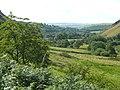 Cwm Berwyn, Ceredigion - geograph.org.uk - 910637.jpg