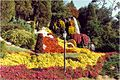 Cypress Gardens Mum Festival 2.jpg