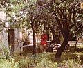 Cyprus. Kato Paphos- 1969 (8411000268).jpg
