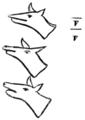 DHNY-v1-p-007-fig-T-V.png