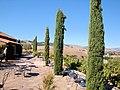 DSC24926, Viansa Vineyards & Winery, Sonoma Valley, California, USA (5886115177).jpg