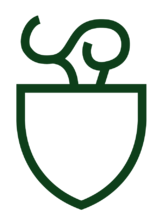 Stylized outline of a shield surmounted by a torch