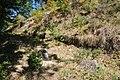 Dacian Fortress of Capalna 069.jpg