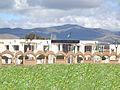 Daira de Timgad.jpg