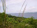 Dalupiri island 100.jpg