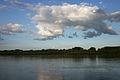 Danube at Gemenc.jpg