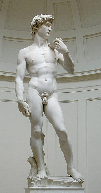 English: Michelangelo's David (original statue...