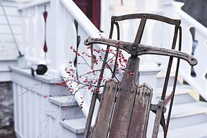 Sled - Decorative Sled