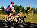 Defense.gov News Photo 101007-F-7049G-256 - U.S. Marine Corps Gunnery Sgt. Daniel P. Frawley rides in the 2010 Warrior Ride at Wilmington N.C. with his dog Poncho on Oct. 7 2010. The.jpg