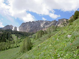 Deseret Peak, the highest peak of the Stansbur...