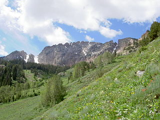 Deseret Peak Wilderness Wilderness area in the Uinta-Wasatch-Cache National Forest in Tooele County, Utah, United States