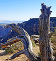 Desert View Watchtower from Navajo Point, Grand Canyon 9-15 (21972086365).jpg