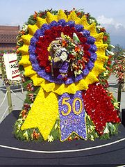 "One of Medellín's traditional ""silletas"" in the Annual Flower Festival."